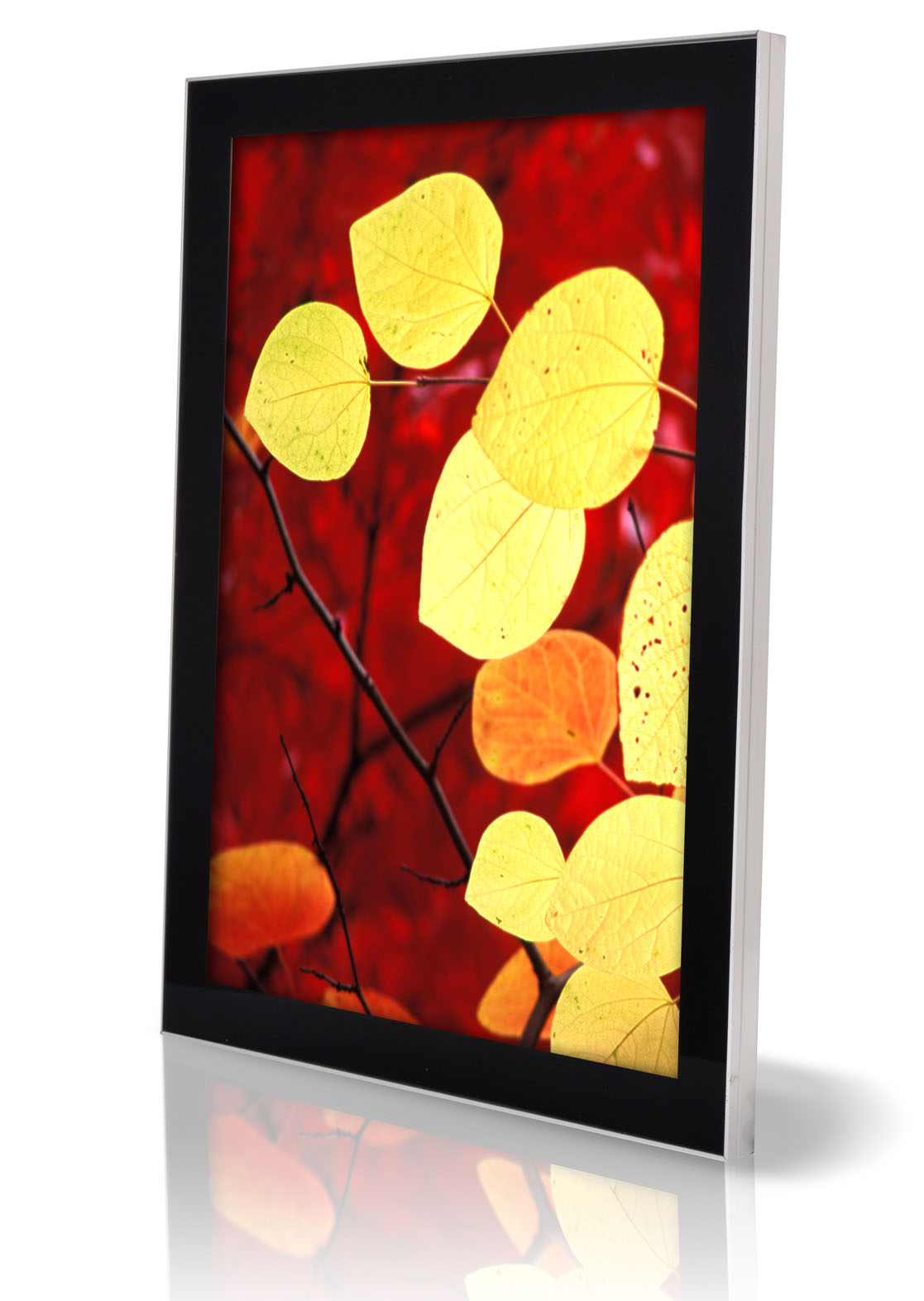 Magnetic Crystal LED Light box